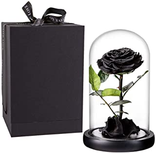Preserved Rose Black Roses Handmade Preserved Flower Real Rose in Glass Dome, Preserved Roses Never Withered Romantic Gifts for Female, Valentine`s Day, Mother`s Day, Birthday (9 inch, Black)