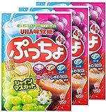 ぷっちょ 袋 4種アソート 98g