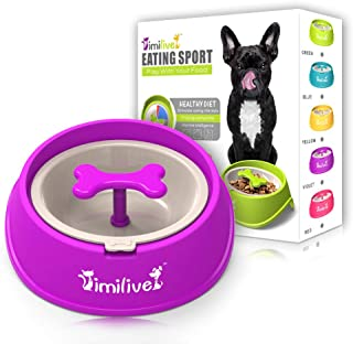 AINAAN Dog Feeder Slow Eating Pet Bowl Eco-Friendly Durable Non-Toxic Preventing Choking Healthy Design, 2019, Purple