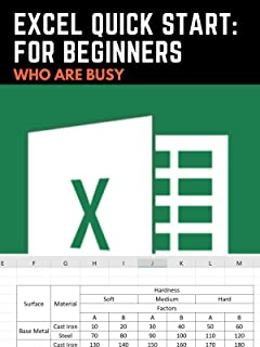 Excel Quick Start: For Beginners who are Busy