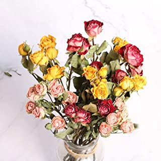 TooGet Ramo de rosas naturales secas de rosas, ramo de flores secas recién cosechadas, manualidades, arreglos de regalo y decoración para escritorio, sala de estar, cafetería, boda