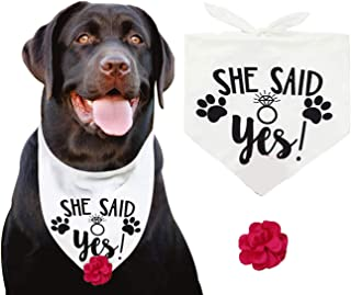 JPB She Said Yes Dog Wedding Bandana with a Interchangeable Flower