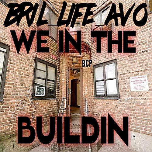 Bril_life_avo