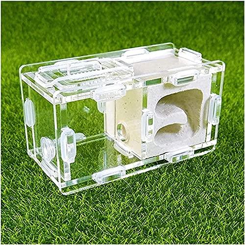 XBSXP Ant Farm Castle C Juego de casa de Hormigas de Yeso con Jaula de cría Juguete Educativo para niños para estudiar el Comportamiento de Las Hormigas en Laberinto 3D (Color: O, Tamaño