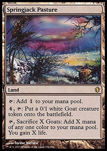 Magic The Gathering - Springjack Pasture (326/356) - Commander 2013