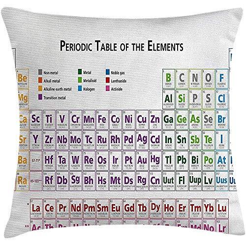 sherry-shop Science Throw Kissen Kissenbezug von, Chemie Grundschüler Geek Nerd Lektionen Klassen Smart Kids Kunstdruck, Multicolor 20X20In