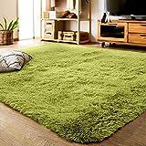 YJ.GWL ラグカーペット 緑 ラグマット2畳 12色 120*160cm ふわふわじゅうたん カーペット 洗える 夏 センターラグ グリーン