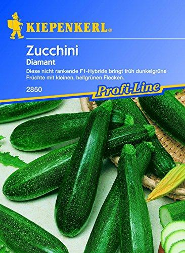 Kiepenkerl, Zucchini Diamant