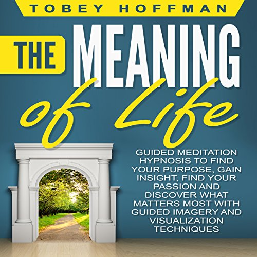 The Meaning of Life audiobook cover art