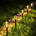 6-Pack Solpex Solar Pathway Waterproof LED Lights