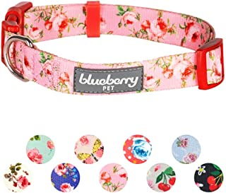 Best dog collar roses Reviews