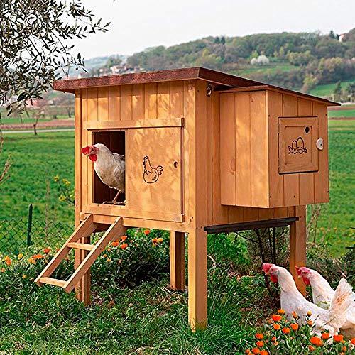 Ferplast Hühnerstall für Legehennen HEN HOUSE 10 für den Außenbereich, aus widerstandsfähigem, umweltfreundlichem FSC Holz, für ca. 4 Hühner, Zubehör inklusive