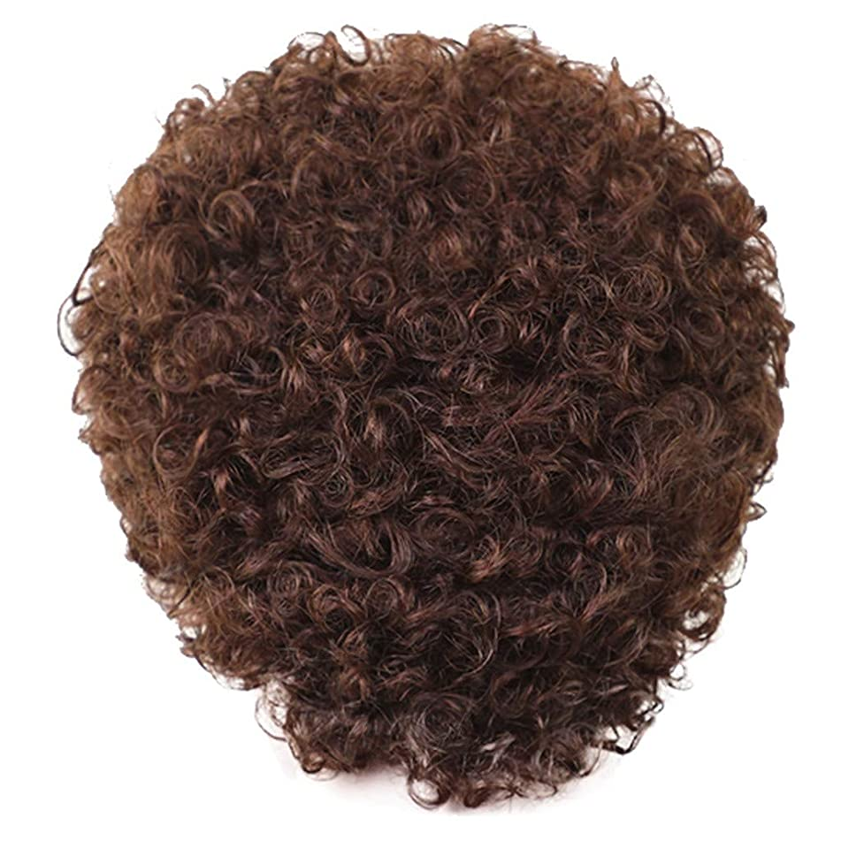 Short Wigs for Women Brown Curly Wigs Real Human Hair Wig Sexy Black Women Wigs for Party Cosplay Wig for Women