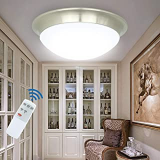 DLLT 24W Dimmable LED Disk Light, Flush Mount Ceiling Light Fixture, Remote Control Surface Mounted Downlight, Brightness Adjustable Round Ceiling Lighting for Bedroom Kitchen Bathroom 11inch