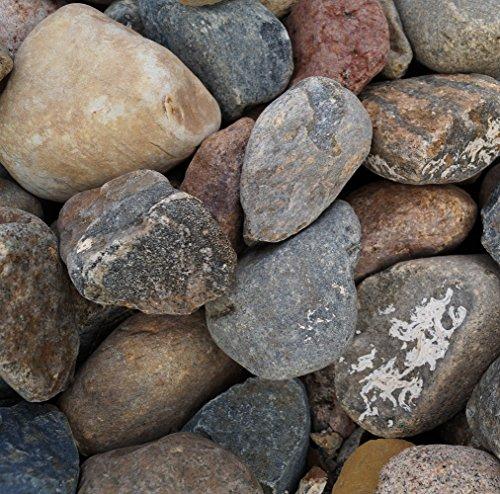 GABIONA Nordseekiesel Natursteine Bruch I Gabionen Steine zum Befüllen für Gabionenkörbe für die individuelle Gartengestaltung I Sichtschutz aus Stein Zaunelemente Säulen Ø (60-80 mm, 250 KG)