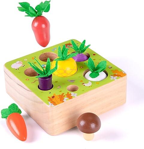XIAPIA Jouet en Bois Jeu de tri Motricité Fine Jouets Bebe Montessori Jouet Enfant 1 2 3 Ans Récolte de Ferme pour Ga...