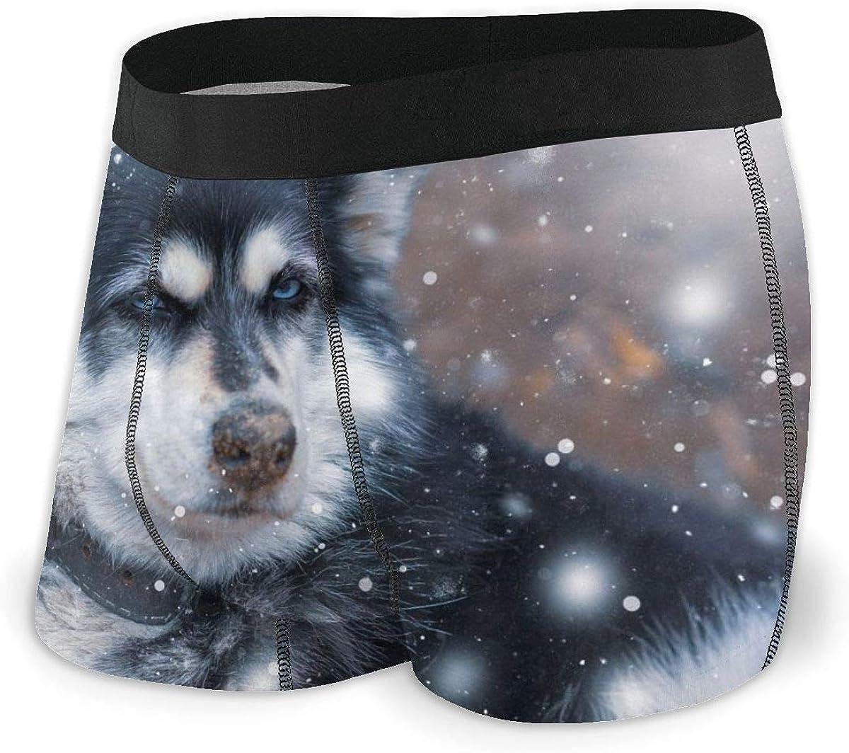 Mens Boxer Briefs Funny Siberian Husky Dog Snow Breathable Underwear