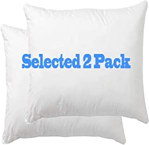 Danmitex Euro Pillow Insert, Decorative Throw Pillow Stuffer, Down and Feather Filled, Cotton Fabric (White), 26x26, Set of 2, Suitable for Home, Bed