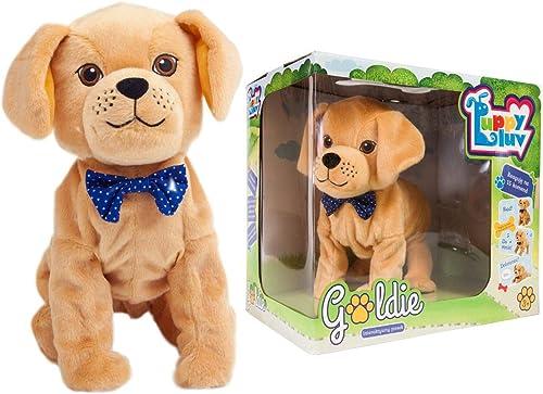 Goldie DKO8275 Toy, MulticolGoldt