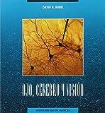 Ojo, cerebro y visión