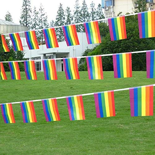 66 Feet Rainbow Flag LGBT Pride Flag String,76Pcs Indoor/Outdoor Human Rights Gay Lesbian Pride Flag Banner Decorations(8.2' x 5.5'') by Spar.saa