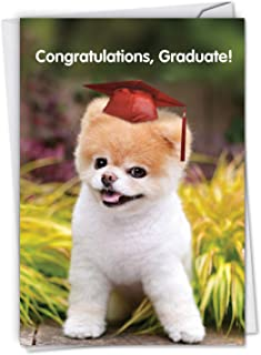 Boo-tiful Future - Funny Graduation Card with Envelope - Starring Boo The World's Cutest Dog Wearing a Graduates Cap - Say Congratulations to College, Elementary and High School Grads C6820GDG