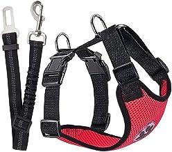 Amazon.es: cinturon de seguridad para perros