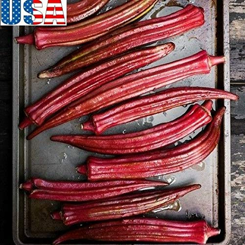 "PLAT FIRM KEIM SEEDS: 100 Samen: USA-VERKÃ""UFER Bowling Red Okra 25-200 Samen HEIRLOOM NON GMO"