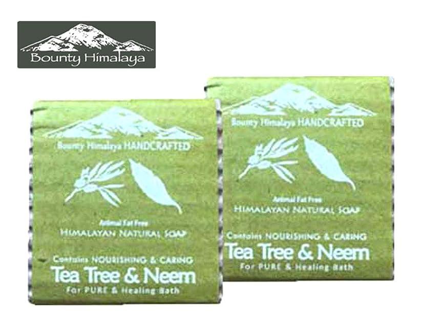 ピストン仕える安全アーユルヴェーダ ヒマラヤ ティーツリー?ニーム ソープ2セット Bounty Himalaya Tea Tree & Neem SOAP(NEPAL AYURVEDA) 100g