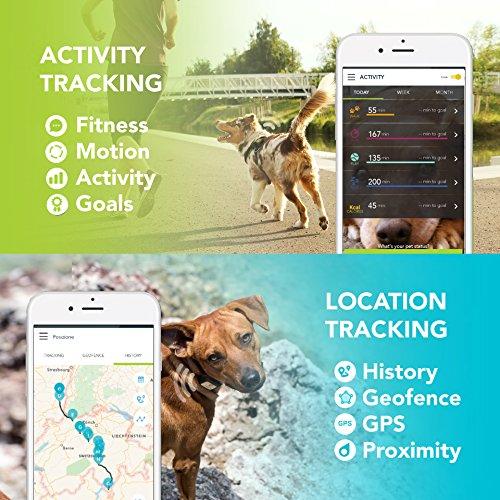 Kippy Vita kv0001bl GPS und Activity Tracker für Haustiere Abbildung 3
