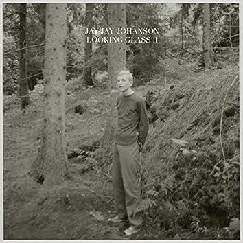 Looking Glass, Vol. 2 (Bury the Hatchet Bonus Album)