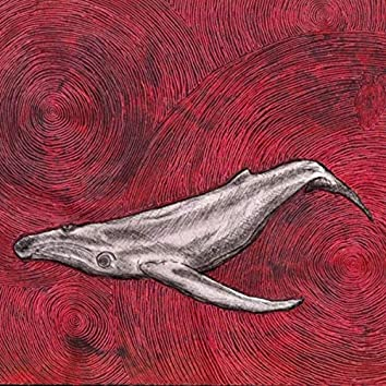 The Ocean (feat. Ana Sandoval)