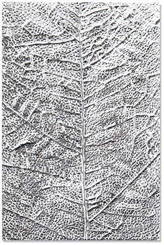 Sizzix Carpeta de Repujado Textured Impressions 3-D 664488, Venas de Hoja, Multicolor, Talla única