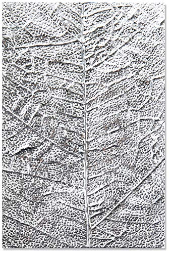 Sizzix 3-D Textured Impressions Embossing Folder 664488, Leaf Veins, Multicolour, One Size