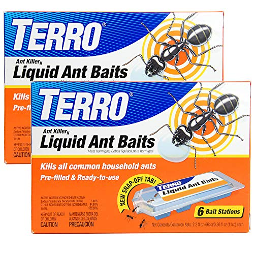 Best Ant Killer For Patios