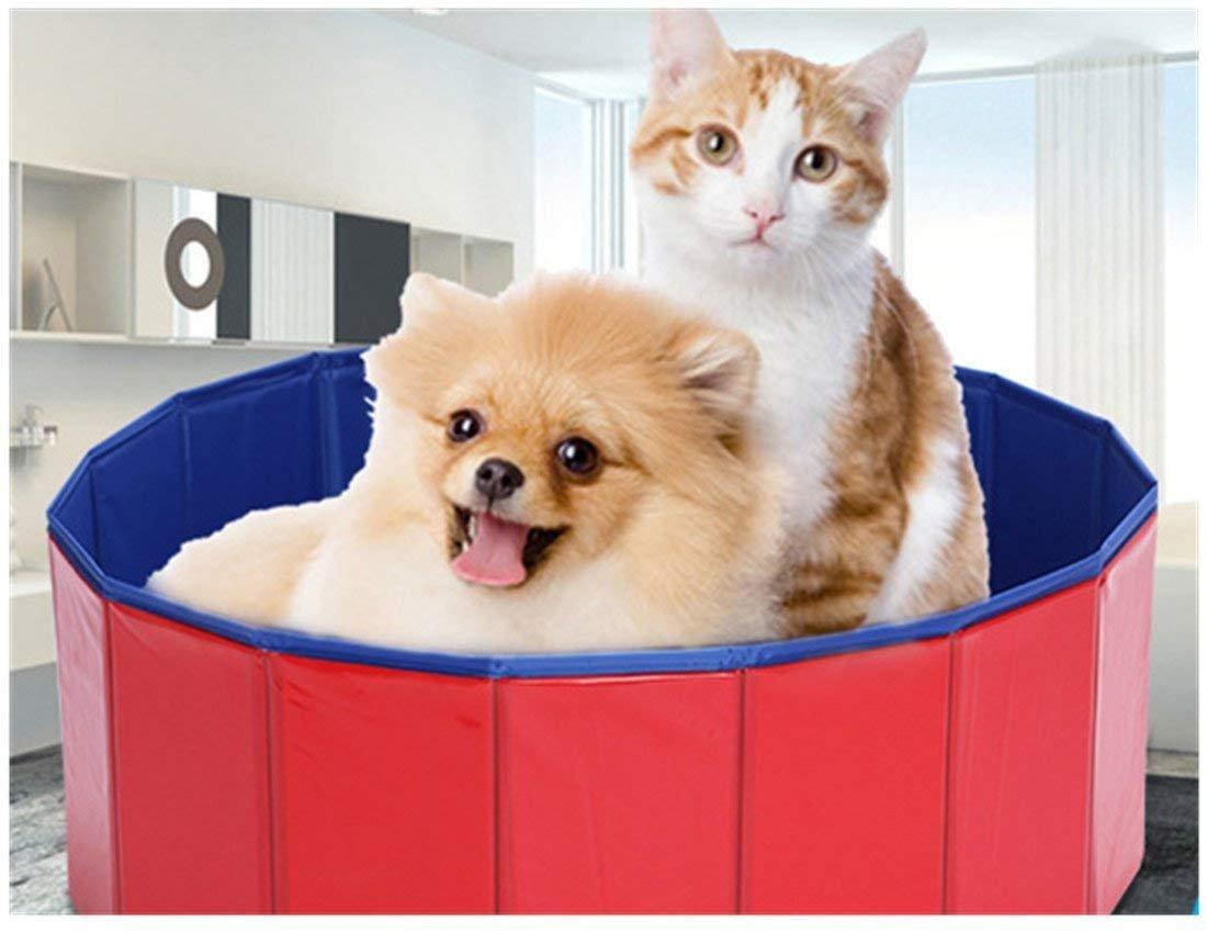 Homemper Bañera para Perro y Gato/bañera para Mascotas, Piscina Plegable para Perros, bañera para Belleza para Mascotas/bañera Grande/Lavabo para Perros, Plegable rápido (M): Amazon.es: Productos para mascotas