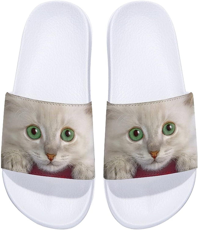Cat Men's and Women's Arlington Mall Comfort Outdoor Indoor Sandals Slide New product! New type