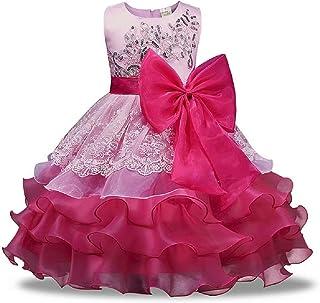 Hooyi Vestido de Princesa para Niñas Ropa de Boda Vestido de Encaje Disfraz Formal de Dama de Honor 3-8T