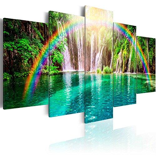 murando - Cuadro en Lienzo 200x100 cm Cascada Impresión de 5 Piezas Material Tejido no Tejido Impresión Artística Imagen Gráfica Decoracion de Pared Arco Iris c-A-0071-b-n