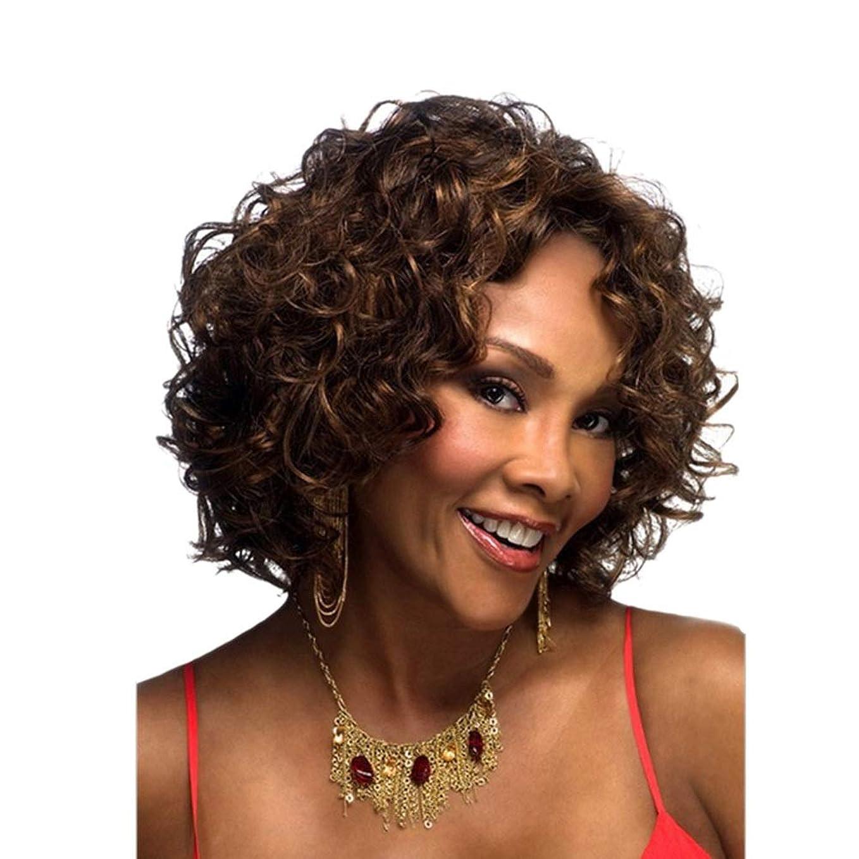 悪意ためにモナリザYOUQIU 女子ショートカーリーウィッグ波状ブラウン髪の熱のためにかつらはCospalyパーティーヘアウィッグのかつらをレジスト (色 : ブラウン)