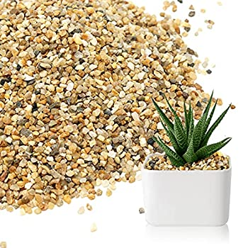 2.7lb Coarse Sand Stone - Course Sand,Silica Sand for Plant,Soil Cover Succulent and Cactus Bonsai Horticultural Sand,Natural Decorative Sand for Vases Fillers,Terrarium Fairy Garden,Top Dressing
