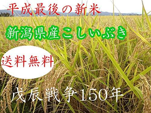 平成30年新潟県産こしいぶき無洗米 (新潟県産こしいぶき無洗米, 5kg×24)