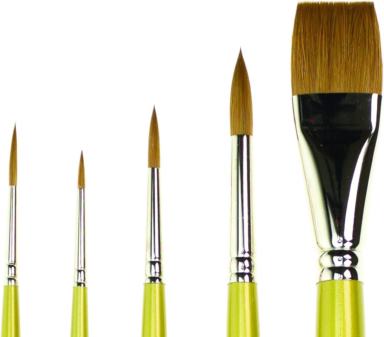 SAA gold Brush Set of Five