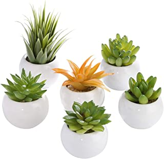 LOMIRO Artificial Succulents Potted Succulents Small Succulent Plants with White Ceramic Pots,Home,Office,Party,Wedding,Desk Decors, Modern.Set of 6