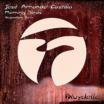 Morning Birds (Stygmalibra Remix)