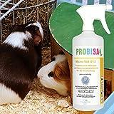 Geruchsneutralisierer Spray gegen Gerüche von Katzen-Urin - 5