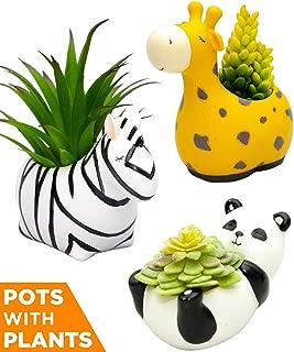 Peacefo Assorted Set of 3 Animal Planters and Artificial Succulent Plants, Cactus Flower Plant Pot, Indoor Home Garden Office Table Desktop Decoration,Panda Giraffe Zebra Living Room Shelf Desk Decor
