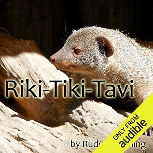 Riki-Tiki-Tavi audiobook cover art