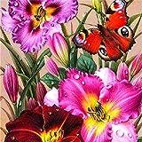 MAJFK Kits de pintura de diamante con diamantes de imitación de cristal bordado de imágenes coloridas y brillantes de mariposa para decoración del hogar, colorido