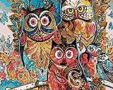 FGHJSF Pintura por Números Búho de Color DIY Pintura al óleo con Pinceles y Pinturas para Adultos Niños Principiantes Decoración del Hogar Y Regalo - 40 x 50 cm (Sin Marco)